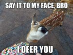 Say It To My Face Bro. I Deer You