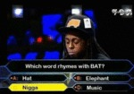 Which Word Rhymes With Bat...
