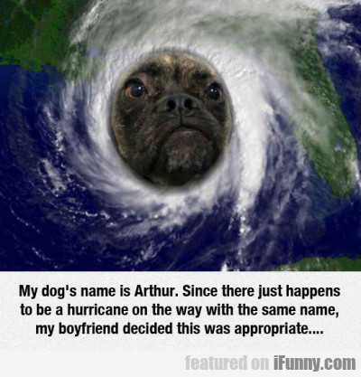 My Dog's Name Is Arthur. Since There Just...