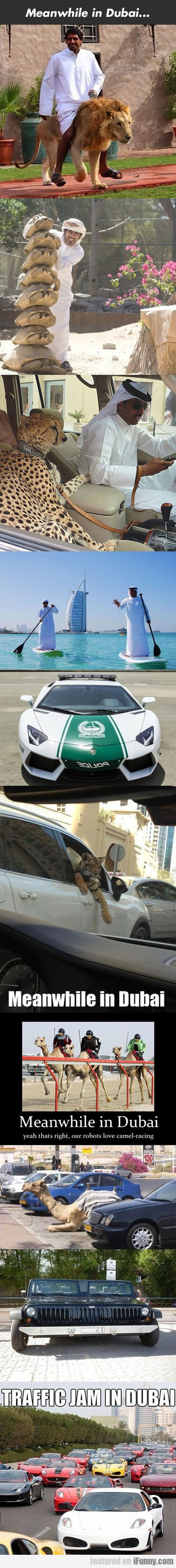 Meanwhile In Dubai...