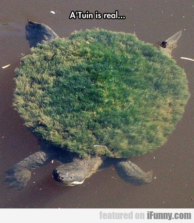 A'tuin Is Real...