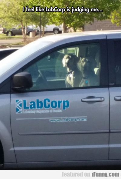 I Feel Like Labcorp Is Judging Me...