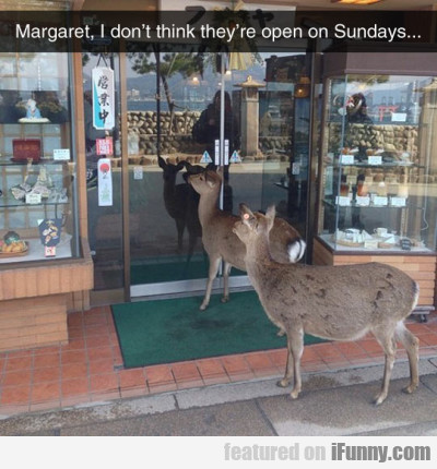 Margaret, I Don't Think They're Open On Sundays...