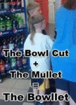The Bowl Cut Plus The Mullet...