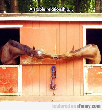 A Stable Relationship...