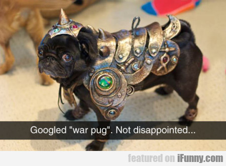 Googled War Pug. Not Disappointed..
