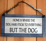 Home Is Where The Dog Hair Sticks To Everything..