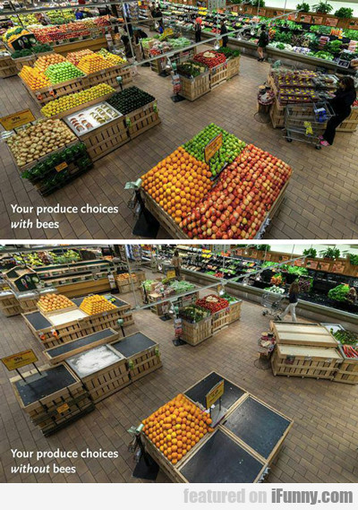 Your Produce Choices With Bees...