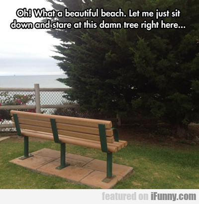 Oh! What A Beautiful Bench...