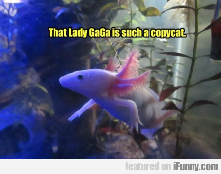 That Lady Gaga Is Such
