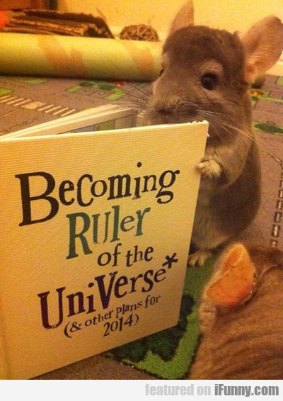Becoming Ruler Of The Universe...