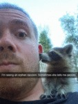I'm Raising An Orphan Raccoon. Sometimes She...