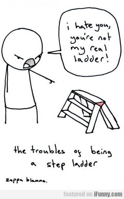 I Hate You, You're Not My Real Ladder...