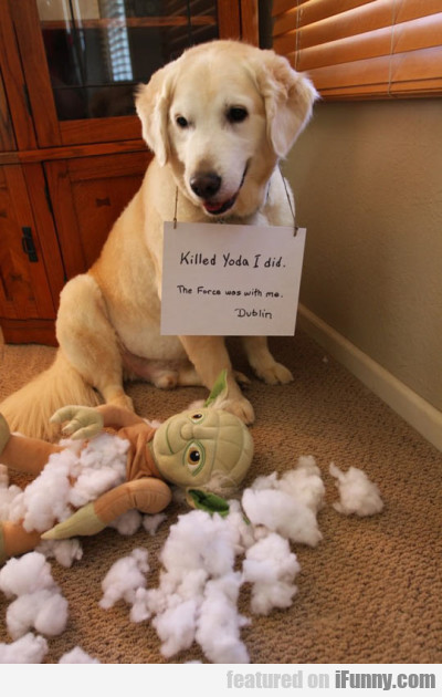 Killed Yoda I did. The force was with me.
