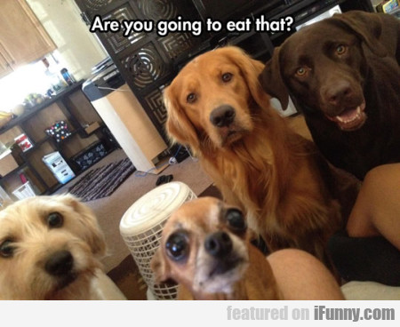 Are You Going To Eat That?