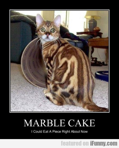 Marble Cake I Could Eat