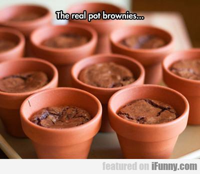 The Real Pot Brownies...