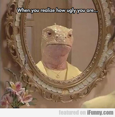 When You Realize How Ugly You Are...