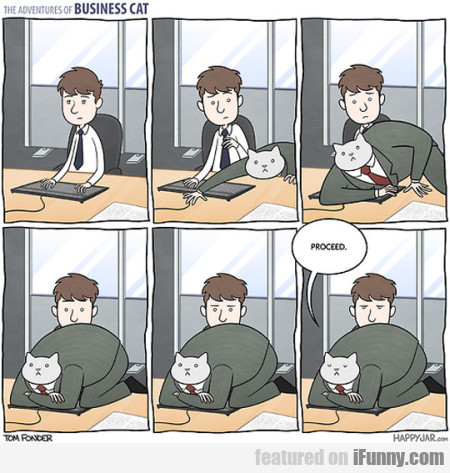 The Adventures Of Business Cat. Proceed
