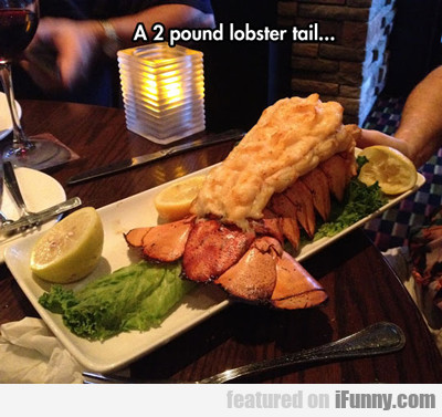 A 2 Pound Lobster Tail...