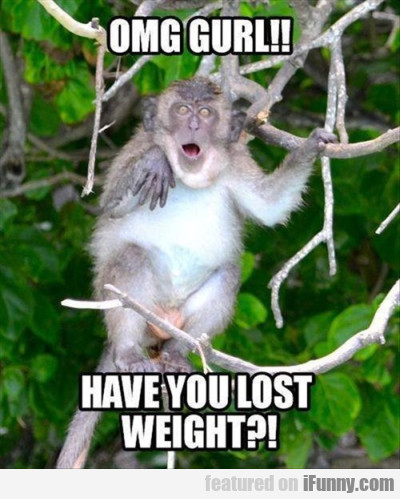 Omg Gurl! Have You Lost Weight?