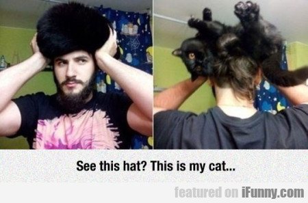 See This Hat? - This Is My Cat...