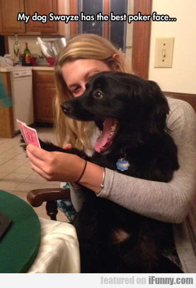 My Dog Swayze Has The Best Poker Face...
