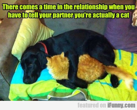 There Comes A Time In The Relationship When You..