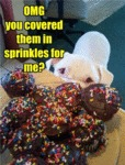 Omg You Covered Them In Sprinkles For Me
