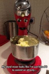 My Stand Mixer Looks Like...