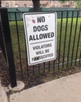 No Dogs Allowed - Violators Will Be Pawsecuted