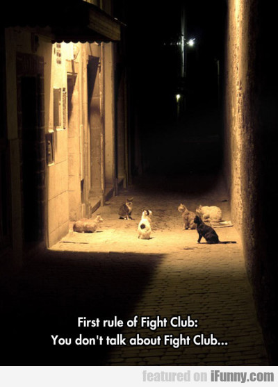 First rule of Fight Club... you don't talk about..