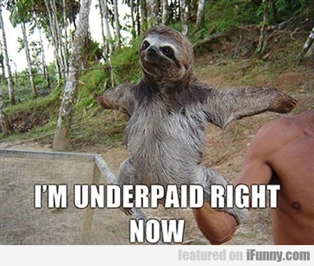 i'm  underpaid right now