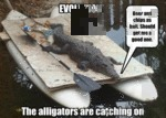 Evolution. The Alligators Are Catching You