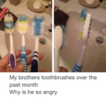 My Brother's Toothbrushes...