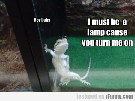Hez Baby. I Must Be A Lamp