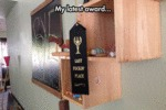 My Latest Award...