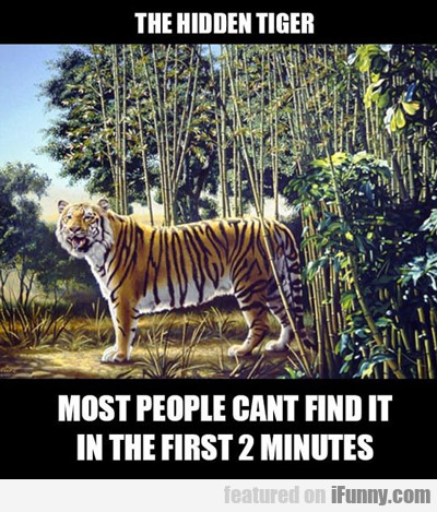 The Hidden Tiger, Most People Can't Find It...