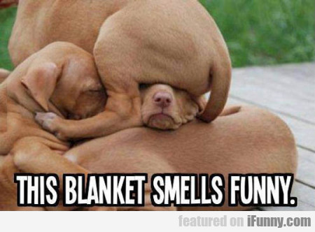 This Blanket Smells Funny