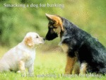Smacking A Dog For Barking Is Like Smacking...