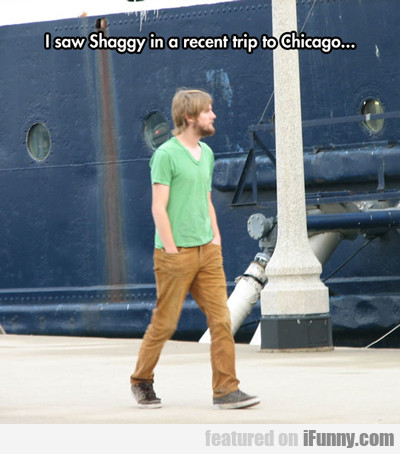 I Saw Shaggy On A Recent Trip To Chicago...