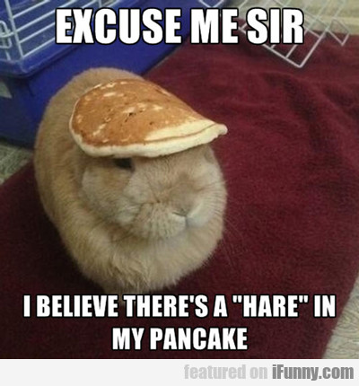 Excuse Me Sir, I Believe There's A Hare...