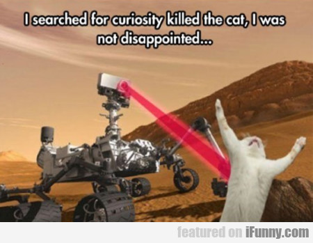 I Searched For Curiosity Killed