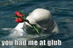 You Had Me At Glub