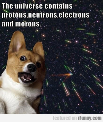 The Universe Contains Protons, Neutrons, Electrons
