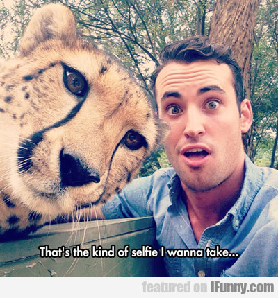 That's The Kind Of Selfie I Wanna Take...