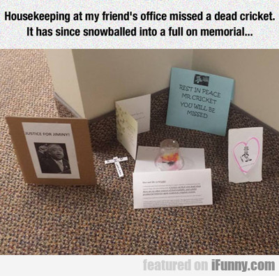 housekeeping at my friend's office...