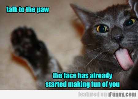 Talk To The Paw. The Face Has Already Started...