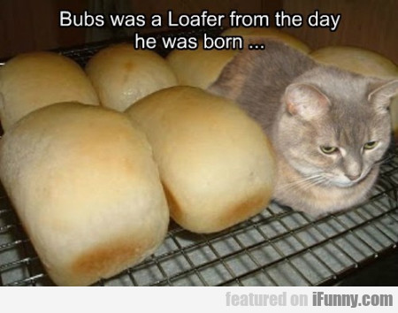 Bubs Was A Loafer From The Day He Was Born