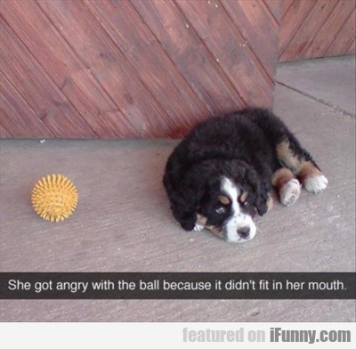 She Got Angry Because The Ball Didn't Fit In...